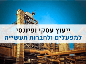 ייעוץ עסקי למפעל